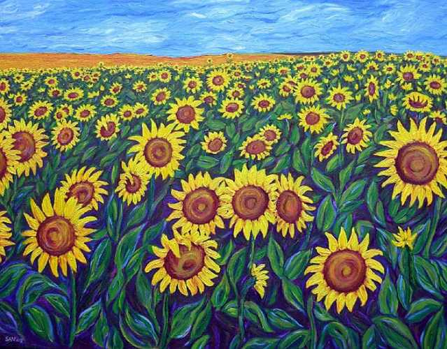 Sunflowers: Oil on canvas, 76x60cm Sold
