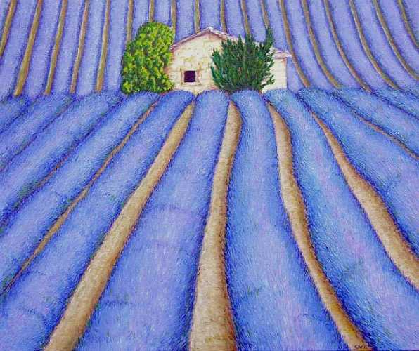 Lavender: Oil on Canvas, 61x51cm Sold